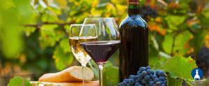 Read more about the article Which Is Healthier: Red or White Wine?