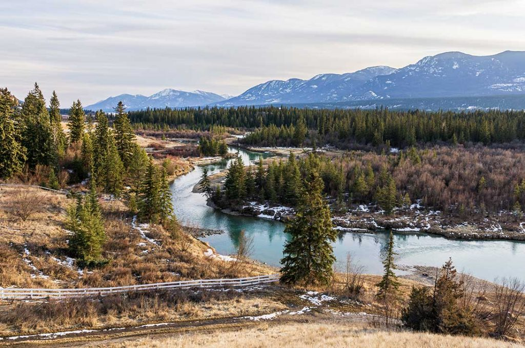 Beautiful fairmont creek in canadian rocky mountains spring Regional District of East Kootenay.